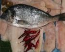Meeresfrüchte und Fisch Kochkurs