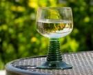 Wein Seminar/Verkostung