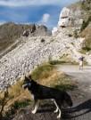 Husky Trekking Tour