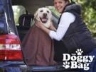 praktisches Hundehandtuch
