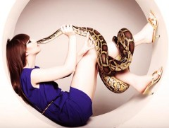 Animalisches Fotoshooting